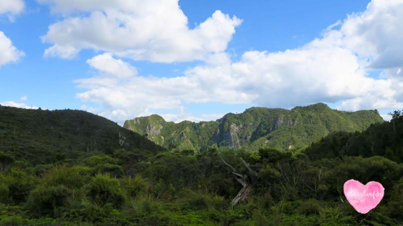South Island--2